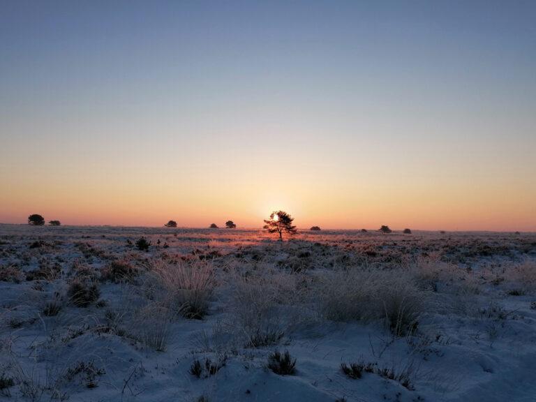 veluwe winterheide bnb speulderveld